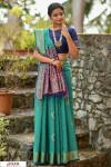 Rama green color Handloom cotton weaving patola saree