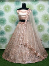 Peach color heavy net lehenga with embroidery sequins work