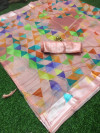 Multi color soft linen saree with beautiful printed work