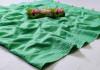 Sea green color cotton silk saree with banglori satin digital print blouse