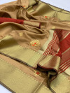 Beige color Soft Raw silk embroidered work saree