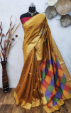 Handloom raw silk saree with ikat woven pallu