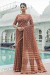 Brown color sambalpuri cotton saree with zari border