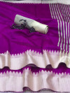 Raw silk saree with lining pallu